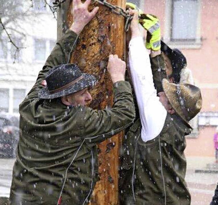 Gemeinsam stark: Görwihler Narren beim Baumstellen    Foto: schütz