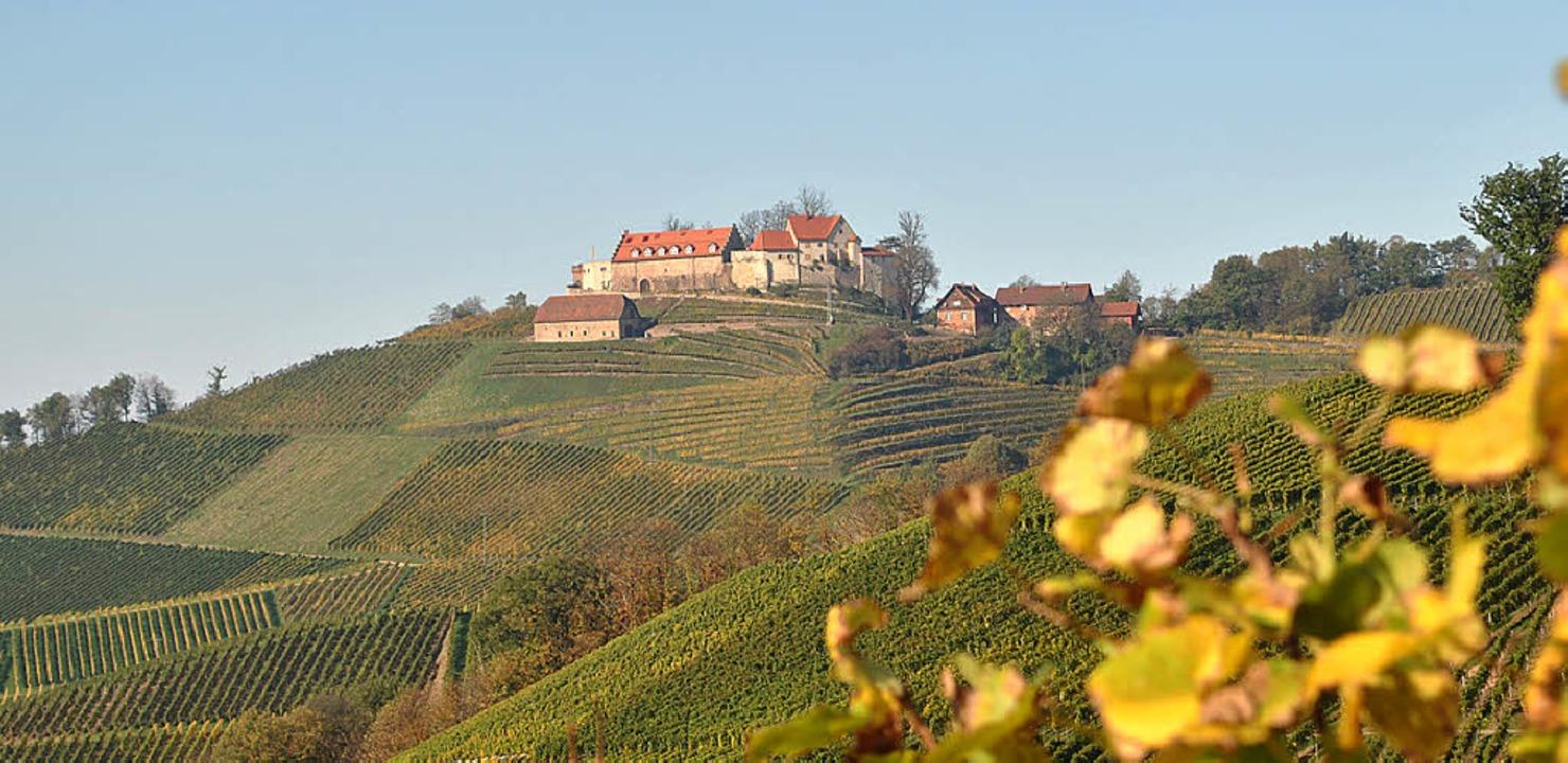 Die Gemeinde will den Standort Durbach...Staufenberg – planvoll sichern.   | Foto: archivfoto: röderer