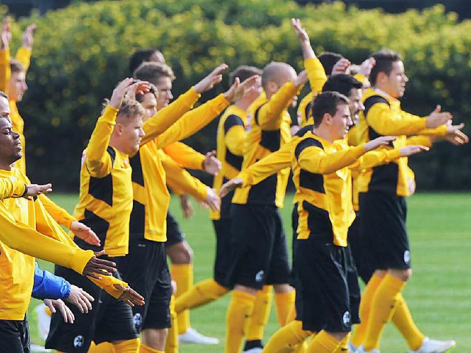 Die SC-Profis werden sich in der Rückr...liga-Abstiegskampf bestehen zu können.  | Foto: schön
