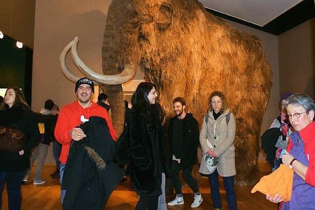 Regen hat Besucher der Basler Museumsnacht abgeschreckt