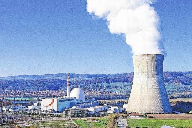 Akw Leibstadt bleibt abgeschaltet – Ursachenforschung geht weiter