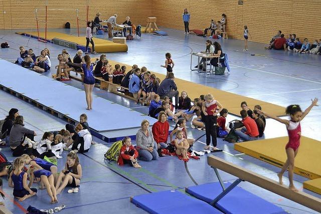 Kreisgymnasium und Schulverbund erfolgreich