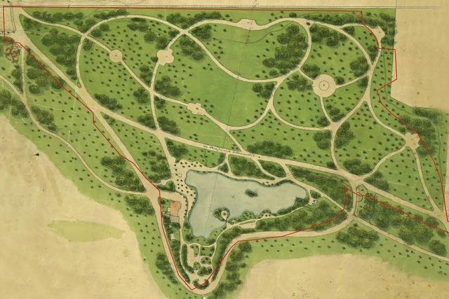 60 Bäume werden im Möslepark gefällt, damit er wieder aussieht wie früher