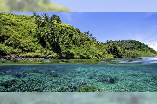 Diavortrag über die Philippinen in Au