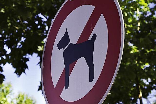 Leinenpflicht für Hunde auf dem Langenhard?