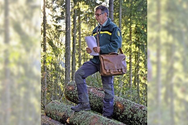 Ein neuer Plan für den Wald