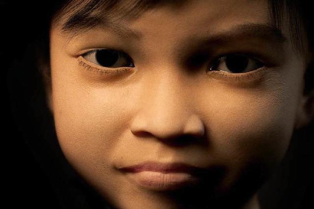 Software gegen Webcam-Kinderprostitution geplant