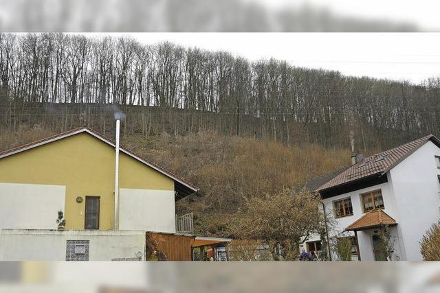 Schattenboxen am Höllsteiner Hang