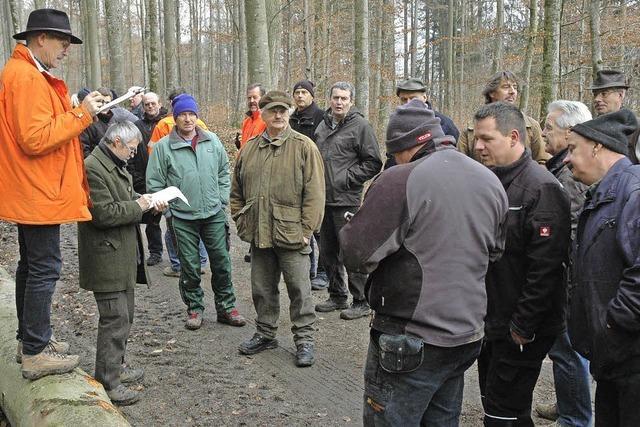 Holzversteigerung bringt einen Erlös von 10 388 Euro