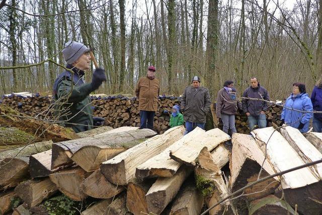 Bis zu 117 Euro für den Doppelster Brennholz
