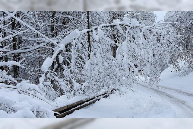 Winterdienst hatte riesige Schneemassen im Griff