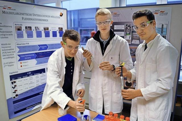 Schüler als Forscher