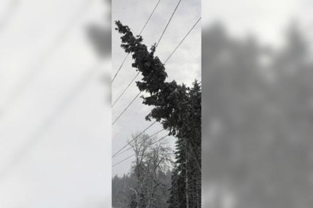 Schneefall sorgt für Stromausfall