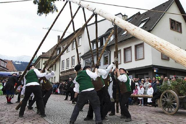 Fotos: Narrenbaumstellen beim Narrentag in Waldkirch