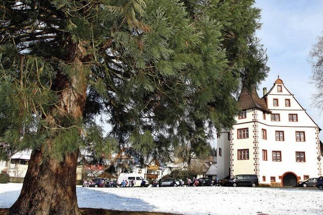 Schlossgarten als Rahmen