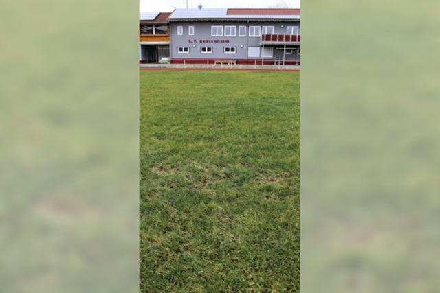 Rasenplatz soll saniert werden