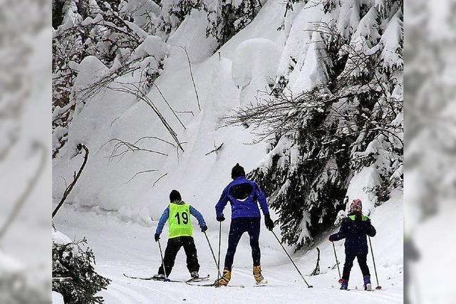 91 Skilangläufer auf der Loipe am Lipple