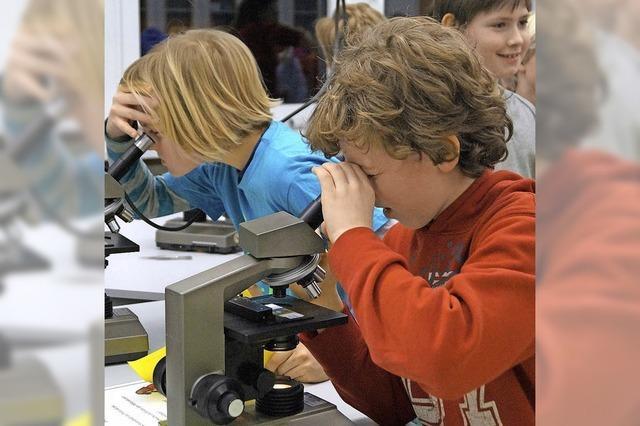Großes Interesse an der Breisacher Realschule