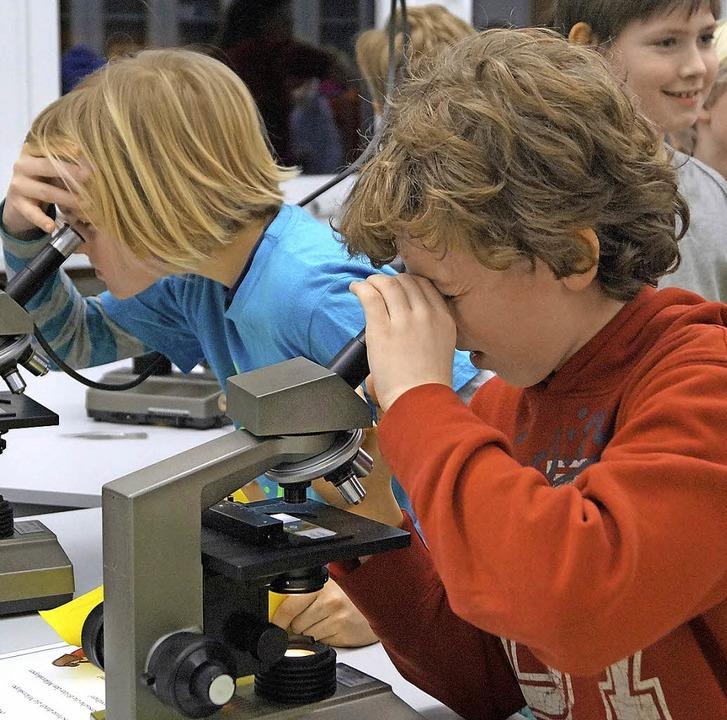 Durch Mikroskope durften Viertklässler...an der Breisacher Realschule schauen.   | Foto: Privat