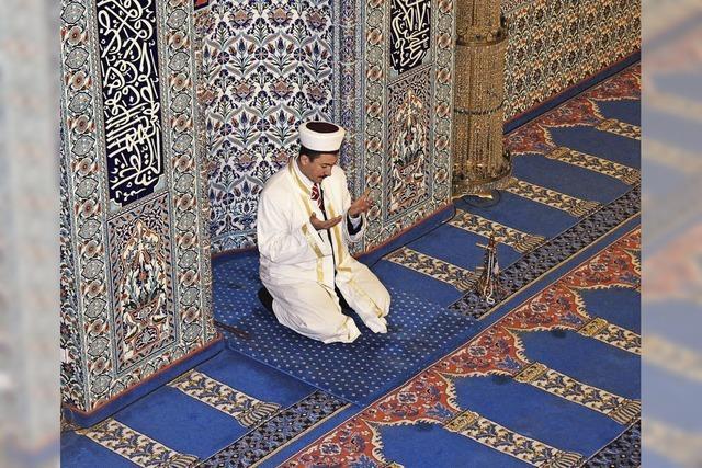 Infoveranstaltung: Neue Wohnformen / Sardellenfest in der Moschee