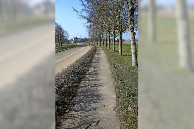 Neuer Radweg entlang der Schutternstraße