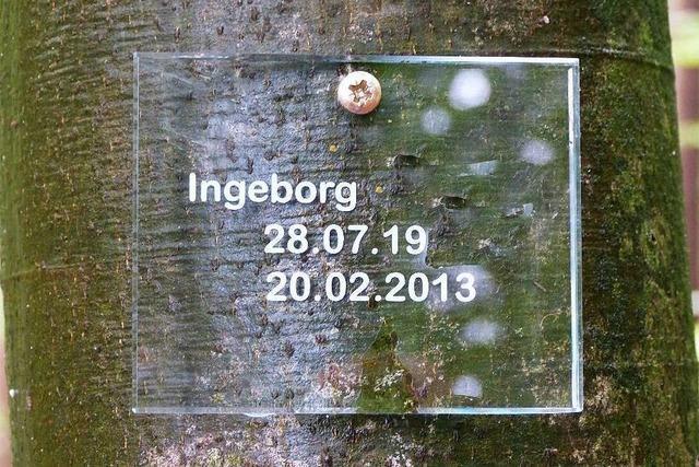Die Gemeinde Neuried bekommt einen Bestattungswald