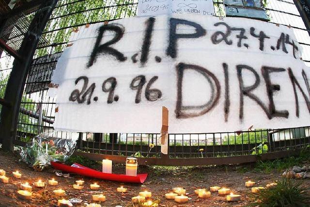 70 Jahre Haft für Todesschützen von Austauschschüler Diren