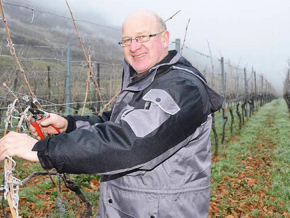 Kilian Schneider, Badischer Weinbauprä...ordringen der amerikanischen Rebzikade  | Foto: Zink