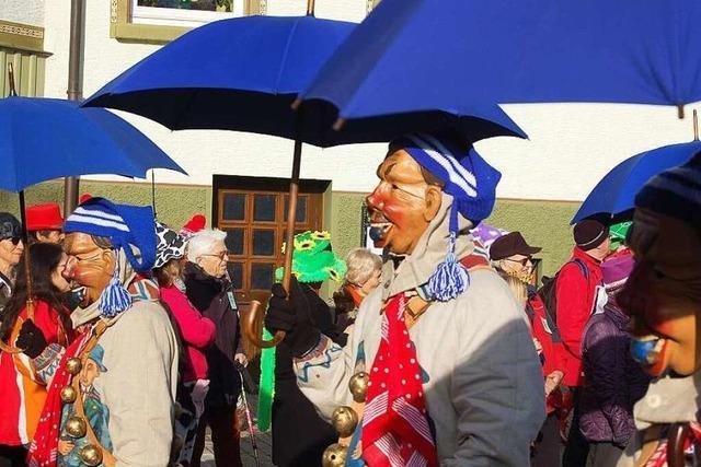 Fotos: Fasnetmontagsumzug in Bonndorf