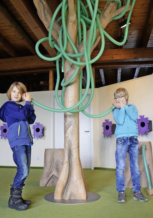 Hör mal: Über Phänomene staunen können...Kinder  im Schwarzwaldhaus der Sinne.   | Foto: Anita Fertl