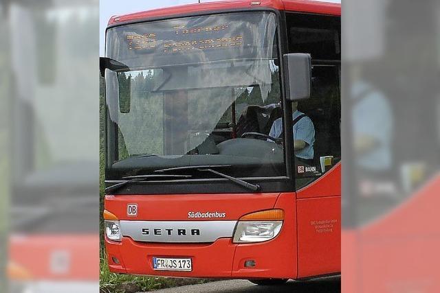 Busse verbinden die Parkplätze mit der Rennstrecke