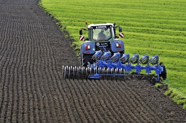 Neues Grünland-Zuschusskonzept bereitet den Landwirten Kopfzerbrechen