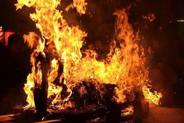 Fotos: Fasnachtsverbrennung Rheinfelden