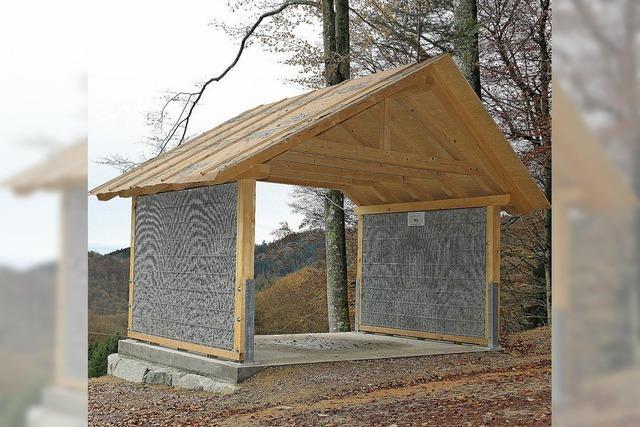 Blechdach für Schutzhütte