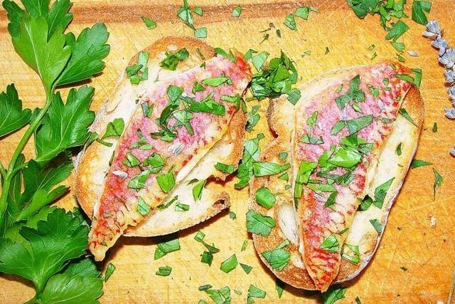 Rotbarbenfilets auf geröstetem Brot – so geht's
