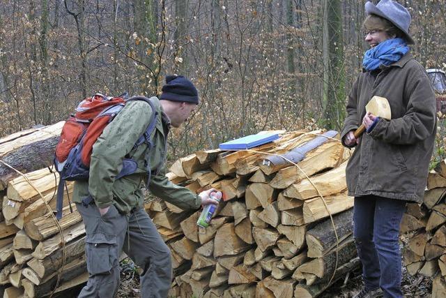 Im Mundinger Wald ist Holzauktion