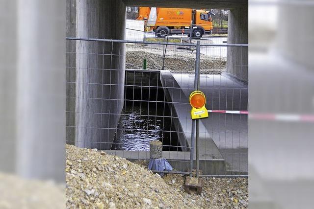 Brückenbau stoppt Züge