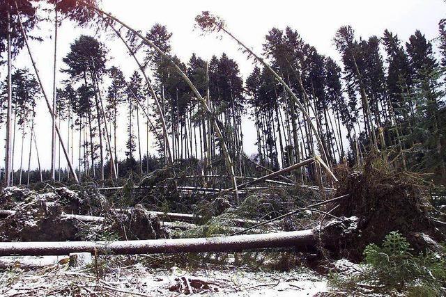 Wetterdienst warnt vor Sturmböen und Glatteis – insbesondere im Schwarzwald