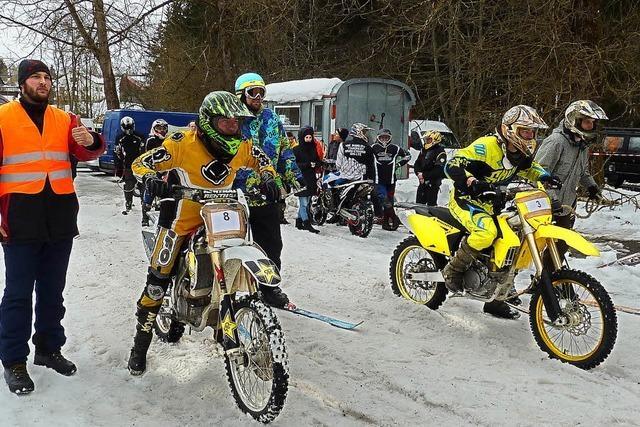 Skijöring auf einem Ski