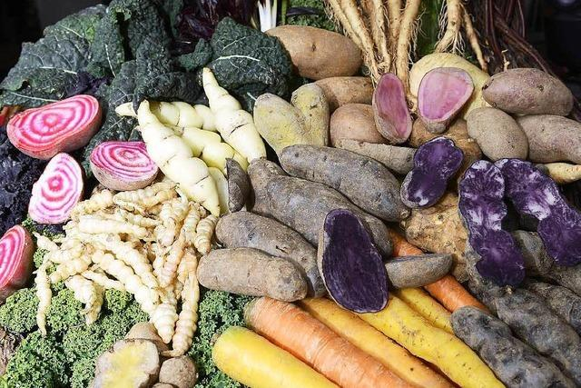 Ursprüngliche Gemüsesorten erweisen sich als Gastromagnet