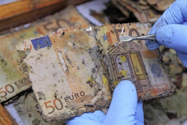 Manche Volkswirte halten Eurorettungspolitik für einen Fehler - warum?