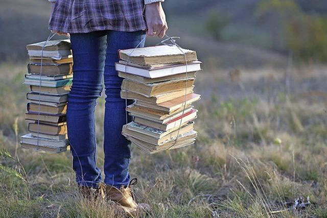 Kurze Blinks statt dicker Bücher