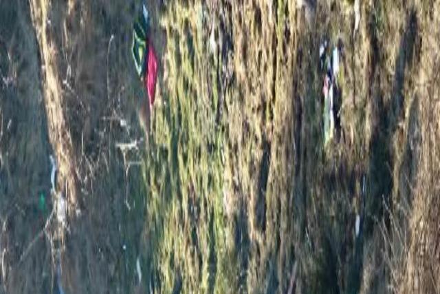 Auto stürzt 75 Meter tiefen Abhang hinunter – Fahrer stirbt bei Falkensteig