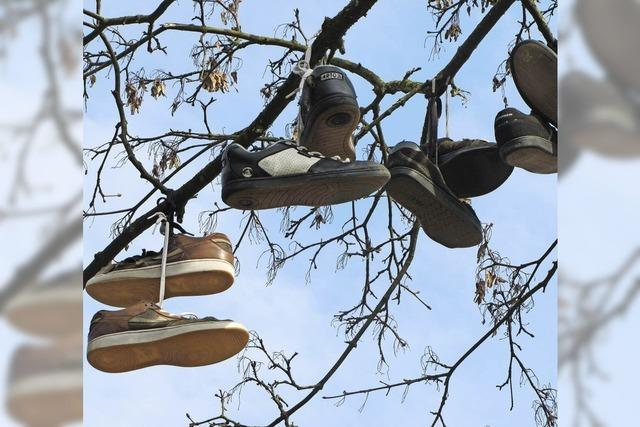 MARKTGEFLÜSTER: Arbor calceamenti