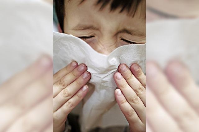 Influenza geht im Landkreis Waldshut zurück