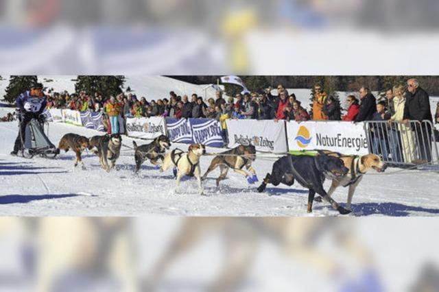 Rund 20 000 Besucher verfolgen die Rennen