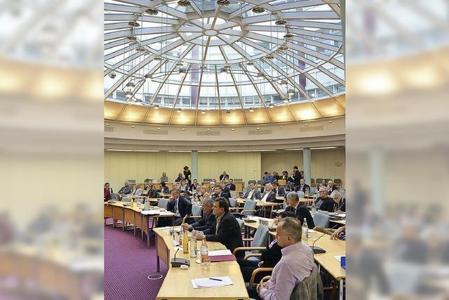 Kreistag zum Fall Alessio: Grüne kritisieren Verhalten der SPD