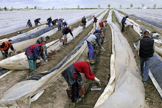 Petition gegen Saisonarbeiter-Bau gescheitert