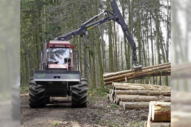 Dienstleistungen für kleinere Waldbesitzer
