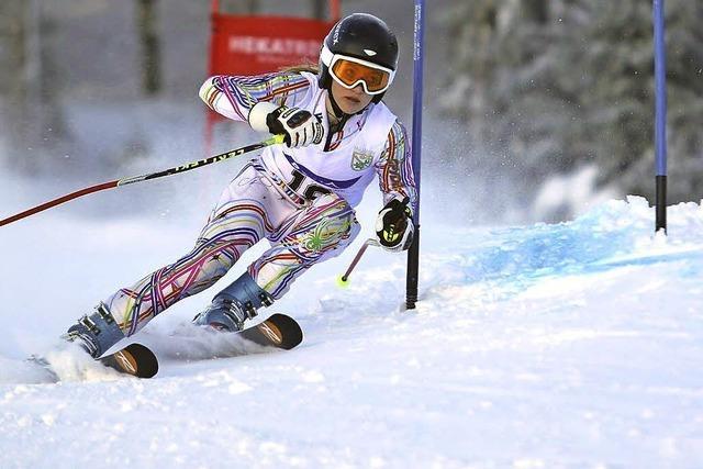 Im Slalom auf Augehöhe